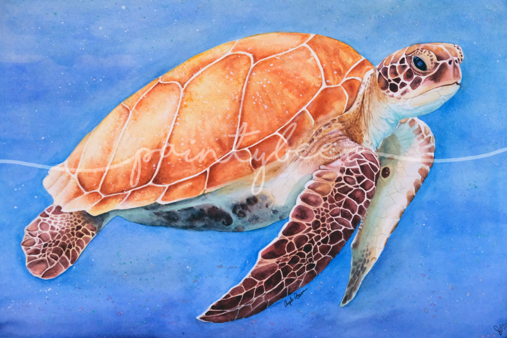 Watercolor art of a sea turtle. Watercolor painting done by Angela (Paintybee).